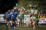 Mark Price Pukekohe hooker throws to an early lineout during the Counties Manukau Premier Club Rugby game between Onewhero and Pukekohe, played at Onewhero, on Saturday April 05 2014. Onewhero won the game 28 - 23 after leading 17 - 15 at halftime.  Photo by Richard Spranger