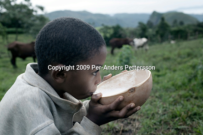 SABGU, CAMEROON - AUGUST 9: A son of Fulani farmer Wakilu Hamidu Haasam's age, 44, drinks milk just milked from the family cows on August 9, 2009 in Sabgu village, Cameroon. Many small farmers in the area are struggling to cope with low milk prices, expensive inputs and competing with low priced milk powder, that is heavily subsidized by European governments and dumped on international markets such as in Africa. (Photo by Per-Anders Pettersson)...