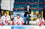 Stockholm 2015-01-04 Ishockey Hockeyallsvenskan AIK - Vita H&auml;sten :  <br /> Vita H&auml;stens tr&auml;nare huvudtr&auml;nare Niklas Czarnecki med spelarna Tobias Liljendahl och Carl Ackered ser nedst&auml;mda ut i b&aring;set under matchen mellan AIK och Vita H&auml;sten <br /> (Foto: Kenta J&ouml;nsson) Nyckelord:  AIK Gnaget Hockeyallsvenskan Allsvenskan Hovet Johanneshov Isstadion Vita H&auml;sten depp besviken besvikelse sorg ledsen deppig nedst&auml;md uppgiven sad disappointment disappointed dejected