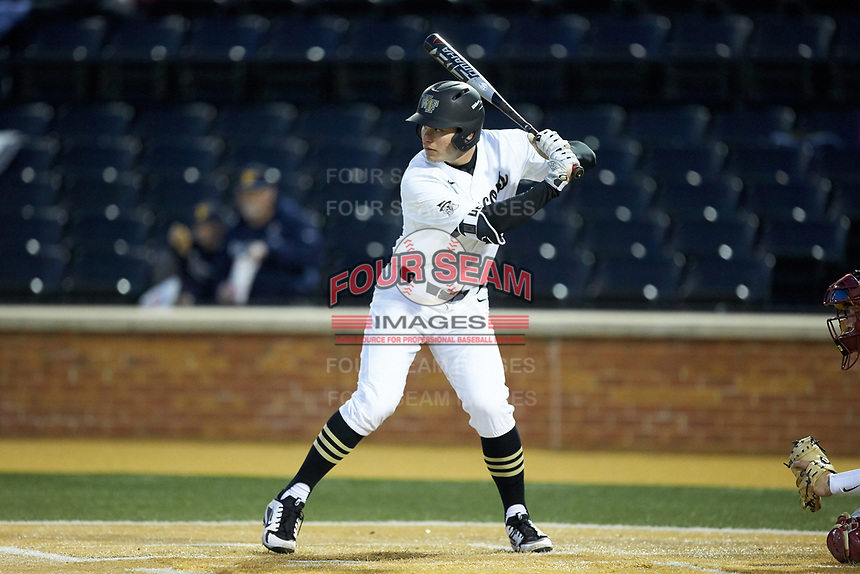 Michael Ludowig (22) of the Wake Forest Demon Deacons at bat against the Florida State Seminoles at David F. Couch Ballpark on March 9, 2018 in  Winston-Salem, North Carolina.  The Seminoles defeated the Demon Deacons 7-3.  (Brian Westerholt/Four Seam Images)