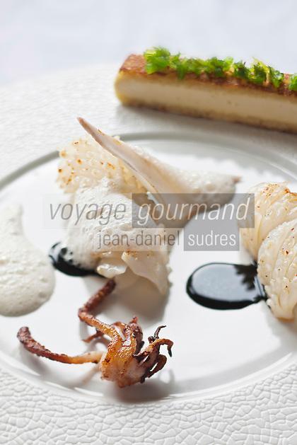 Europe/France/Bretagne/29/Finistère/Plomodiern:  Encornet, mousseuse et encre de seiche, Panini de volaille et wakamé, recette d' Olivier Bellin de l'Auberge des Glazicks