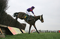 Moonwolf ridden by Mr J S Day jumps the last during the William Bulwer-Long Memorial Novices Fox Hunters Chase