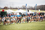 _E1_8453<br /> <br /> 16X-CTY Nationals<br /> <br /> Men's Team finished 7th<br /> Women's team finished 10th<br /> <br /> LaVern Gibson Cross Country Course<br /> Terre Houte, IN<br /> <br /> November 19, 2016<br /> <br /> Photography by: Nathaniel Ray Edwards/BYU Photo<br /> <br /> &copy; BYU PHOTO 2016<br /> All Rights Reserved<br /> photo@byu.edu  (801)422-7322<br /> <br /> 8453