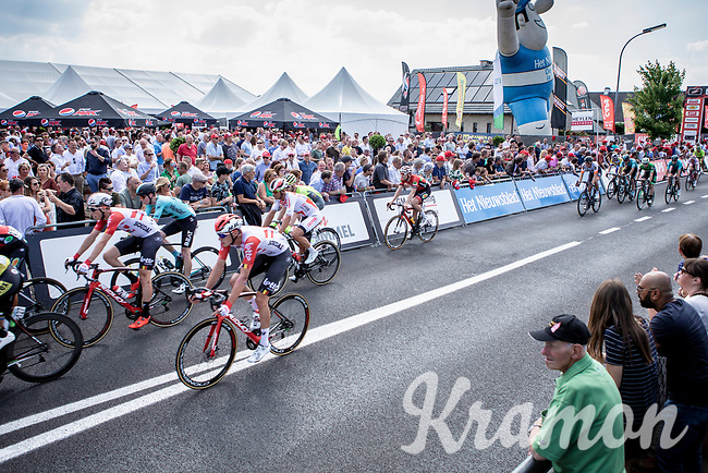 peloton crossing the arrival zone for another local lap. <br /> <br /> Heistse Pijl 2019<br /> One Day Race: Turnhout > Heist-op-den-Berg 194km (UCI 1.1)<br /> ©kramon