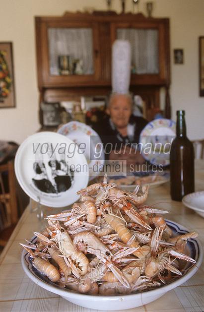 Europe/France/Bretagne/29/Finistère/Loctudy: Chez Jeanne Gueguen, bigoudène dans sa cuisine - [autorisation n° 213– Plat de Langoustines