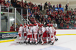 Wisconsin Badgers celebrate a victory during the first round of the NCAA tournament against the Harvard Crimson Saturday, March 15, 2014 in Madison, Wis. The Badgers won 2-1 and advance to the Frozen Four. (Photo by David Stluka)