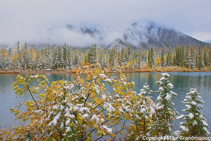Snow and autumn colors along Lorette Ponds <br />Kananaskis Country<br />Alberta<br />Canada