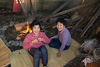 Japan, Mie Prefecture, Osatsu, Toba City. Women Ama free divers. Once pearl divers, they now collect seaweed, conch, lobster, abalone, shellfish. In the early morning hours the women apply oil and warm themselves themselves by the fire in the warming hut to prepare for the days dive. This diving is a 2000 year old tradition, they are third generation divers and all these women are well into their 70's. Model released