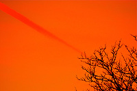 orange streak against an orange sky