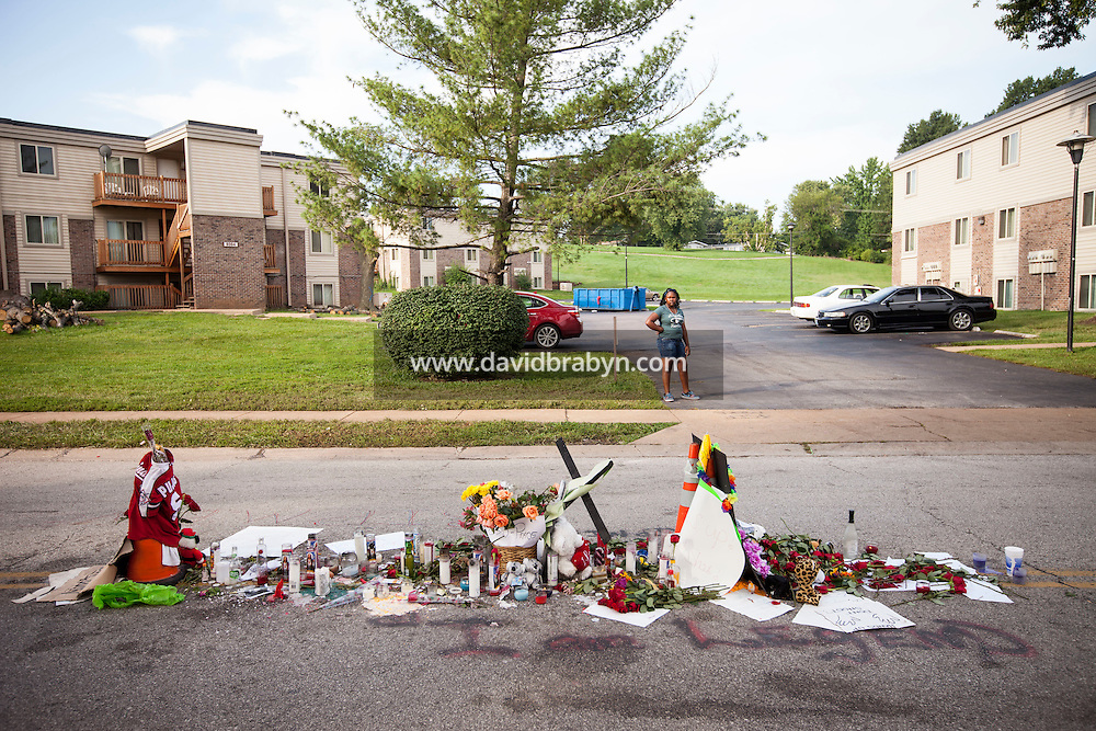 HSUL 20140819 United States, Ferguson, MO. People look at the memorial to Michael Brown on Canfield Drive in Ferguson, MO, on August 19, 2014, at the spot where he was killed. Photographer: David Brabyn