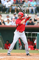 March 22nd 2008:  Shaun Cumberland of the Cincinnati Reds during a Spring Training game at Osceola County Stadium in Kissimmee, FL.  Photo by:  Mike Janes/Four Seam Images