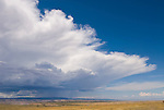 Summer rain and thunderstorm over the Uncompahgre Plateau of western Colorado.
