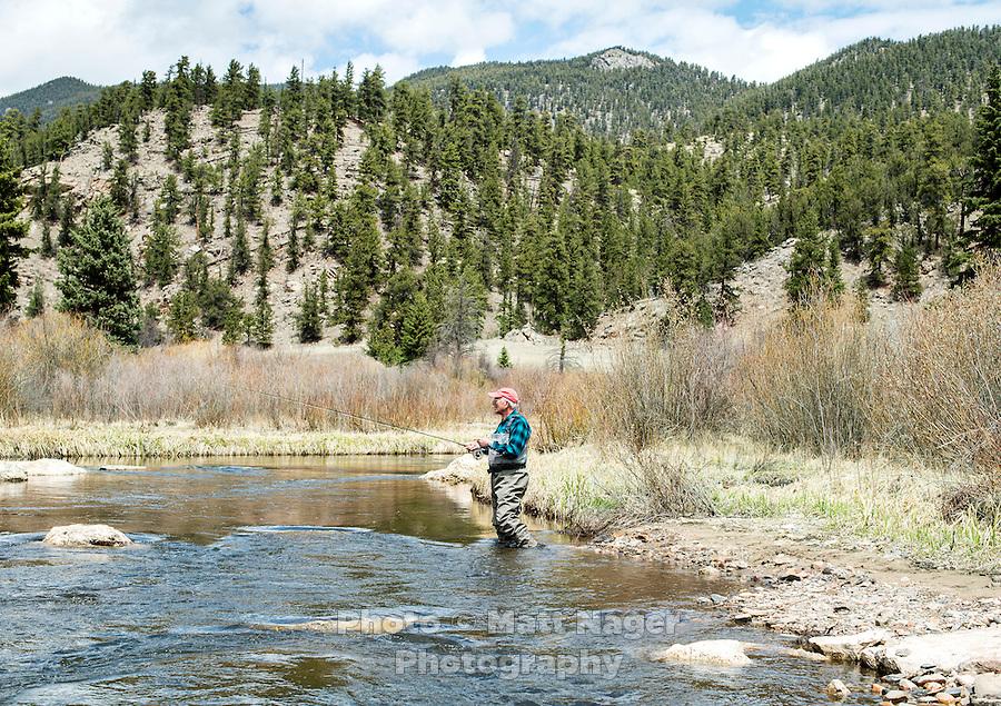 Richard Friedland fly fishing near Colorado Springs, Colorado, Monday, May 4, 2015. <br /> <br /> Photo by Matt Nager