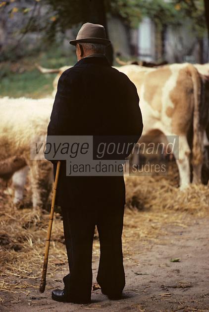 Europe/France/Auvergne/63/Puy-de-Dôme/Riom: Jour de foire marché au bétail<br /> <br /> PHOTO D'ARCHIVES // ARCHIVAL IMAGES<br /> FRANCE 1980