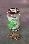 French Breakfast Radish seeds (Raphanus sativus) from the Seed Library of Los Angeles. The Seed Library of Los Angeles (SLOLA) is located at the Learning Garden at Venice High School. Lifetime membership is $10 and allows members to take out seeds, plant and grow their crop, and then at the end of the season, return fresh seeds from their crop to the Library. The process enables fresh seeds to be constantly replenishing the library and protects the genetic purity of the seeds as well by asking members to take the Safe Seed Pledge, keeping the Library free from GMO (genetically modified organisms) seeds.
