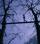 A295JE Teenager walking plank between two trees on adventure course