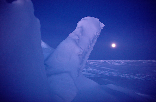 Snow covered sea ice in moonlight during the polar night. N.W. Greenland.