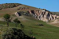 Rocky canyon near Ronda, Andalusia, Spain.