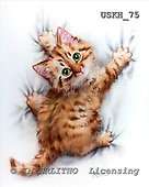 Kayomi, CUTE ANIMALS, paintings, USKH75,#AC# stickers illustrations, pinturas ,everyday
