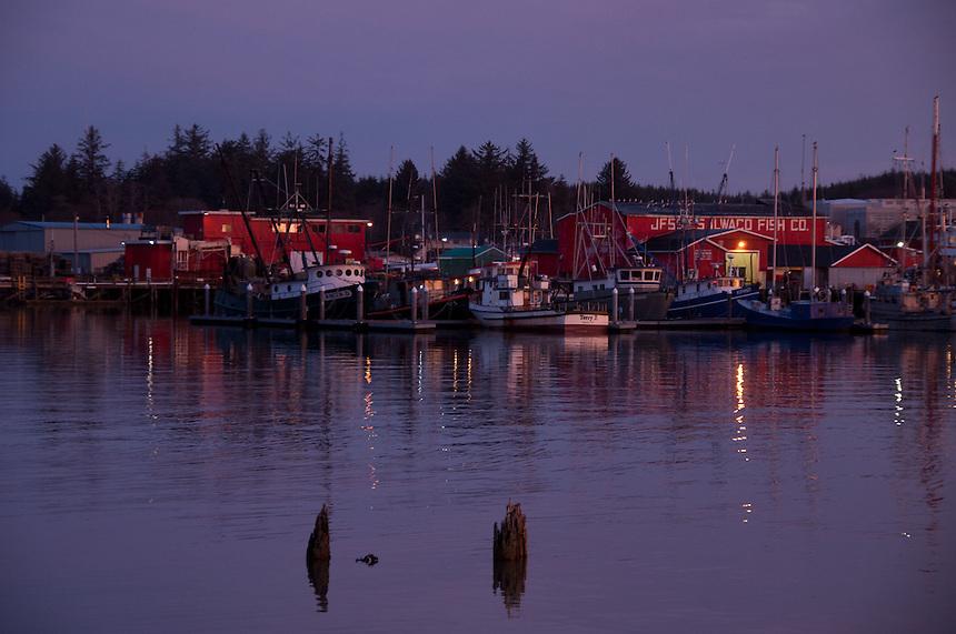 Jessie's Ilwaco Fish Co. at Dawn at Ilwaco Harbor, Ilwaco, Washington, US
