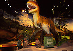 Allosaurus at Pacific Science Center in Seattle