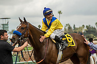 ARCADIA, CA  FEBRUARY 11: #6 Vale Dori, ridden by Mike Smith, in the winners circle after winning the Santa Maria Stakes (Grade ll) on February 11, 2017 at Santa Anita Park in Arcadia, CA. (Photo by Casey Phillips/Eclipse Sportswire/Getty Images)