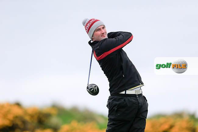 Barry Anderson (The Royal Dublin) during the first round of matchplay at the West of Ireland, Co Sligo golf club, Rosses Point, Sligo. 16/04/2017.<br /> Picture: Golffile | Fran Caffrey<br /> <br /> <br /> All photo usage must carry mandatory copyright credit (&copy; Golffile | Fran Caffrey)