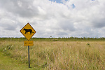 A warning sign is the closest most Everglades visitors will come to the Florida panther.