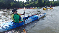 NWA Democrat-Gazette/FLIP PUTTHOFF <br /> Sloughs away from the shipping channel provide beautiful paddling Aug. 2 2018 on the Mississippi River.