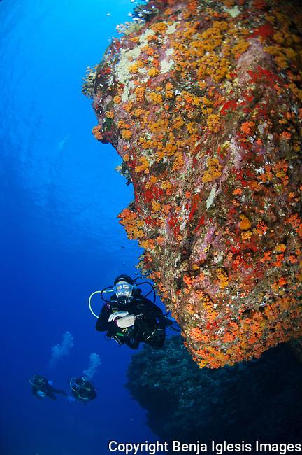 Diver under a ledge at back wall molokini Maui Hawaii.