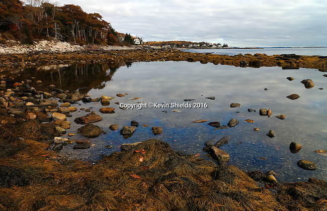 The Rachel Carson Tide Pool, Bristol, Maine, USA.
