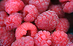 Fresh red raspberries at farmer's market