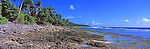 Tuvalu Panorama - Ocean side of Funafuti, Tuvalu<br /> <br /> Image taken on large format panoramic 6cm x 17cm transparency. Available for licencing and printing. email us at contact@widescenes.com for pricing.