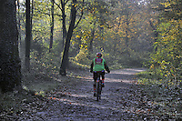 - Lombardia, parco di Monza<br /> <br /> - Lombardy, the Monza Park