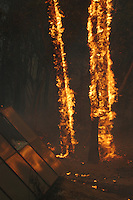 Several trees burn in the backyard of a home on 6800 block of El Camino Norte in the Rancho Santa Fe neighborhood of San Diego, Monday, October 22 2007.