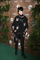 LOS ANGELES - FEB 20:  Diane Warren at the Global Green 2019 Pre-Oscar Gala at the Four Seasons Hotel on February 20, 2019 in Beverly Hills, CA