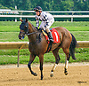 Active Runner winning at Delaware Park on 8/6/16