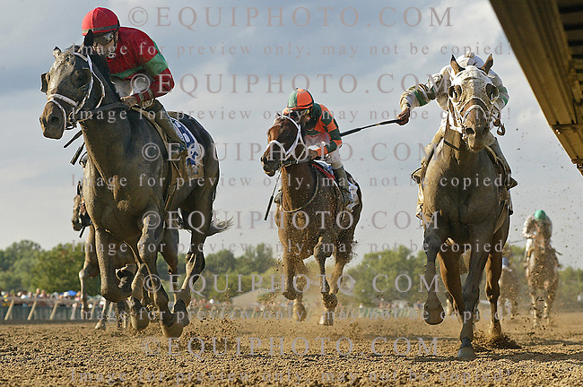 Protonico #8 with Joe Bravo riding won the $300,000 Smarty Jones Stakes at Parx Racing in Bensalem, Pennsylvania September 1, 2014. Center horse is # 3 Albano, Right horse is #2 Classic Giacnroll. Photo by Bill Denver / EQUI-PHOTO