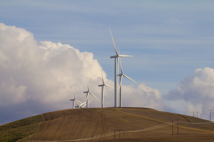 Lower Snake River Wind Facility, Puget Sound Energy, wind turbines line Eastern Washington State wheat country hills, Pomeroy, Washington, Garfield County, Western US, State Highway 12,