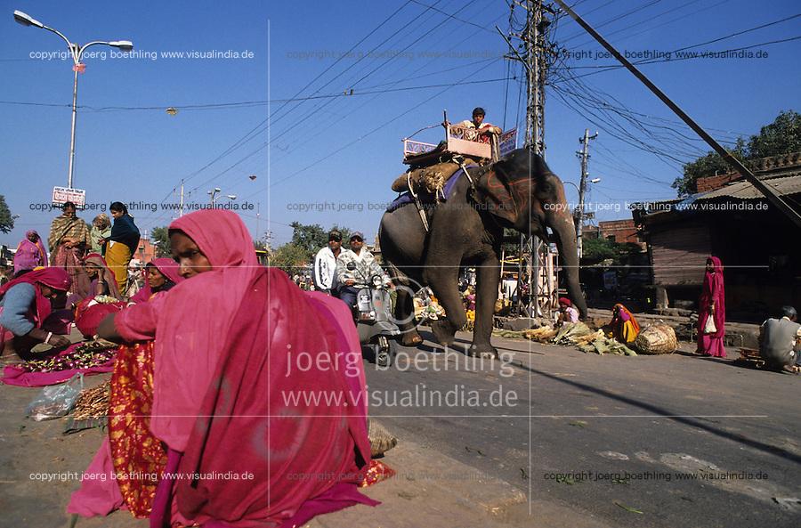 INDIA Rajasthan Jaipur, street traffic and elephant / INDIEN Rajsathan Jaipur, Strassenverkehr und Elefant