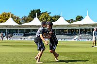 Fans have fun on the park at lunch during the final day of the Second International Cricket Test match, New Zealand V England, Hagley Oval, Christchurch, New Zealand, 3rd April 2018.Copyright photo: John Davidson / www.photosport.nz