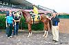 Golden Rivet winning at Delaware Park on 8/31/15