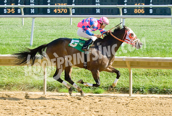 Halo Hollie winning at Delaware Park on 10/10/12
