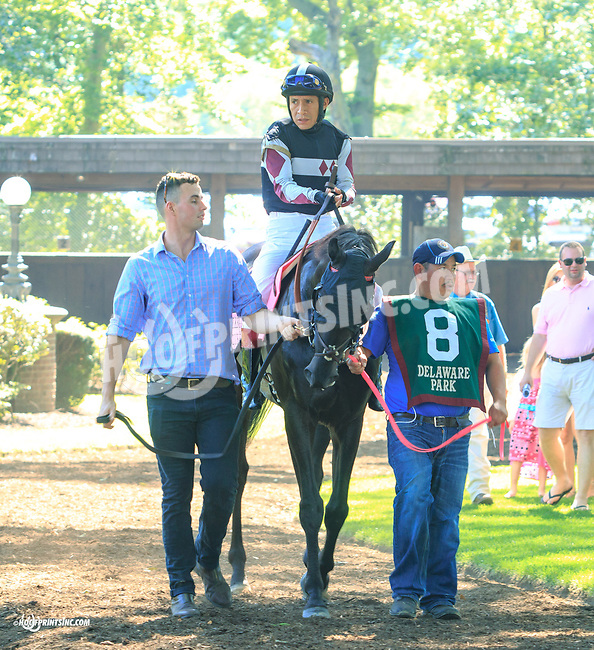 All I Karabout before The Kent Stakes (gr 3) at Delaware Park on 7/18/15