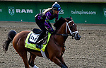 LOUISVILLE, KY - MAY 03: Audible, trained by Todd Pletcher, exercises in preparation for the Kentucky Derby at Churchill Downs on May 3, 2018 in Louisville, Kentucky. (Photo by John Vorhees/Eclipse Sportswire/Getty Images)