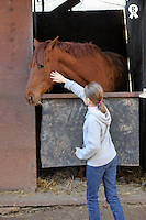 Girl (9) stroking a horse at stable (Licence this image exclusively with Getty: http://www.gettyimages.com/detail/100408131 )