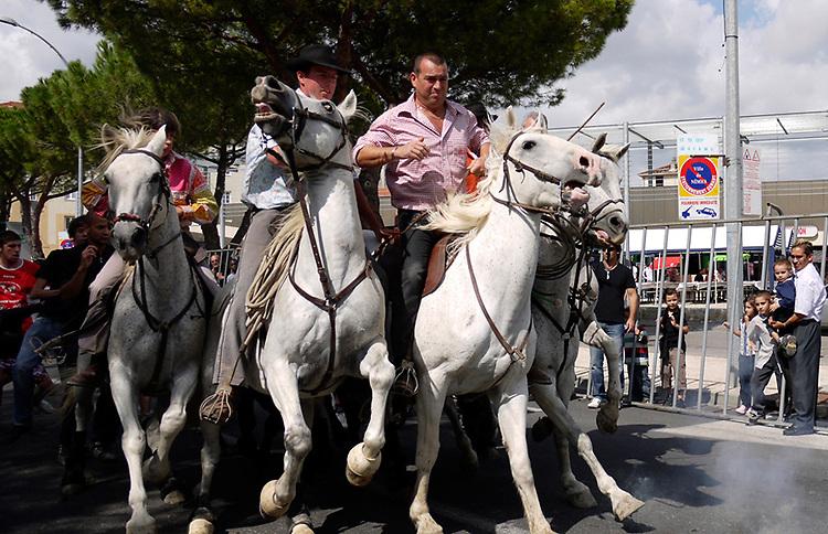 Abrivado (running of the bulls), Arles