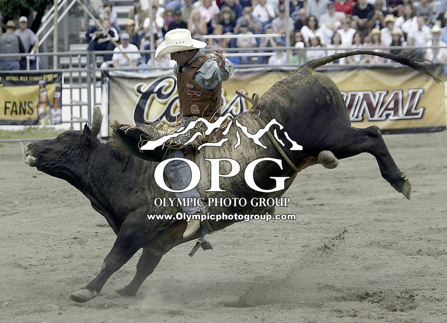29 August, 2004: PRCA Rodeo Bull Rider Myron Duarte ranked 5th in the world riding the bull Real Deal gets tossed during the PRCA 2004 Extreme Bulls competition in Bremerton, WA. Myron won the overall competition with a combined score of 176.