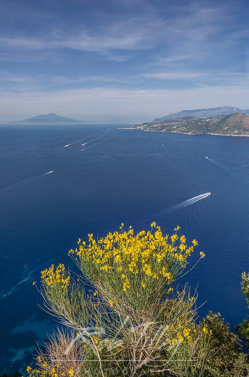 Europe, Italy, Isle of Capri, Sorrento Peninsula View from Villa Jovis