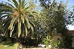 Israel, Negev. Kibbutz Nir Oz in Besor region